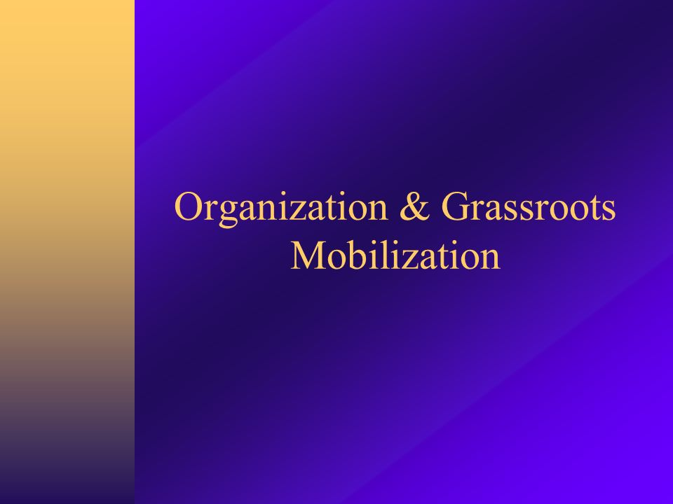 Organization & Grassroots Mobilization