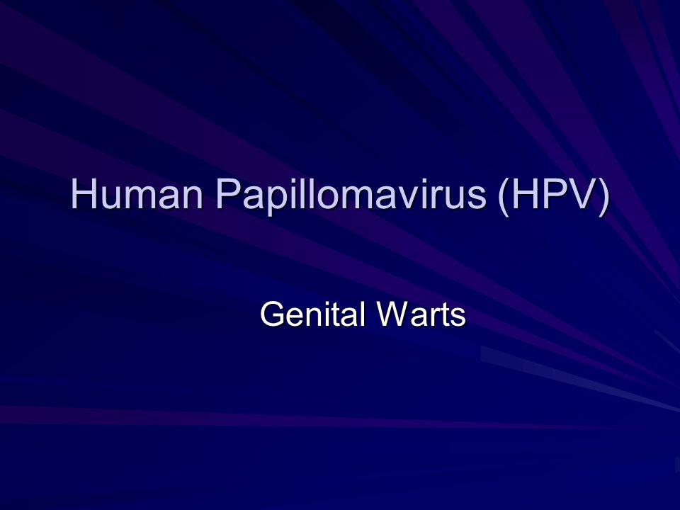 Human Papillomavirus (HPV) Genital Warts