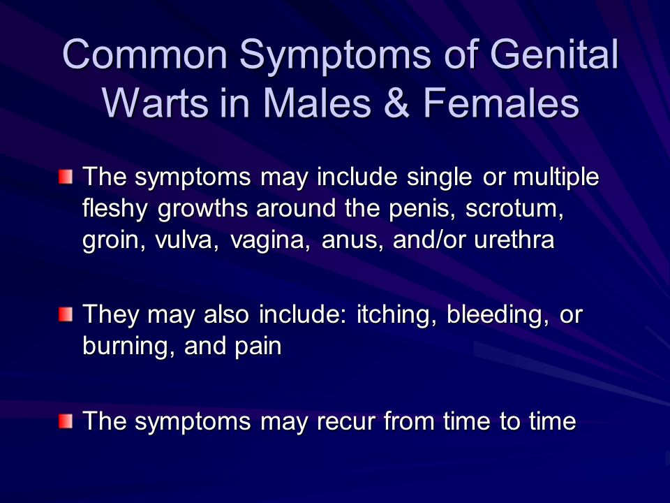 Common Symptoms of Genital Warts in Males & Females The symptoms may include single or multiple fleshy growths around the penis, scrotum, groin, vulva