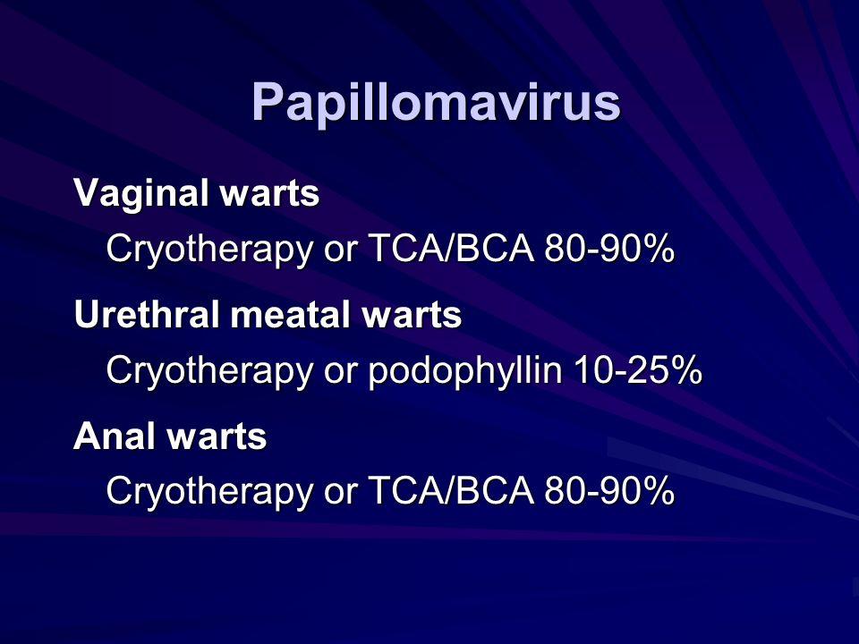 Papillomavirus Vaginal warts Cryotherapy or TCA/BCA 80-90% Urethral meatal warts Cryotherapy or podophyllin 10-25% Anal warts Cryotherapy or TCA/BCA 8