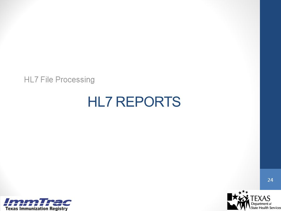 HL7 REPORTS HL7 File Processing 24