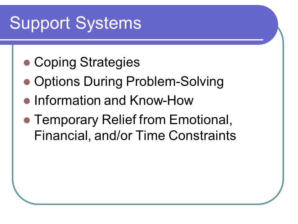 Support Systems Coping Strategies Options During Problem-Solving Information and Know-How Temporary Relief from Emotional, Financial, and/or Time Cons
