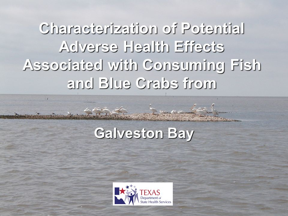 Characterization of Potential Adverse Health Effects Associated with Consuming Fish and Blue Crabs from Galveston Bay