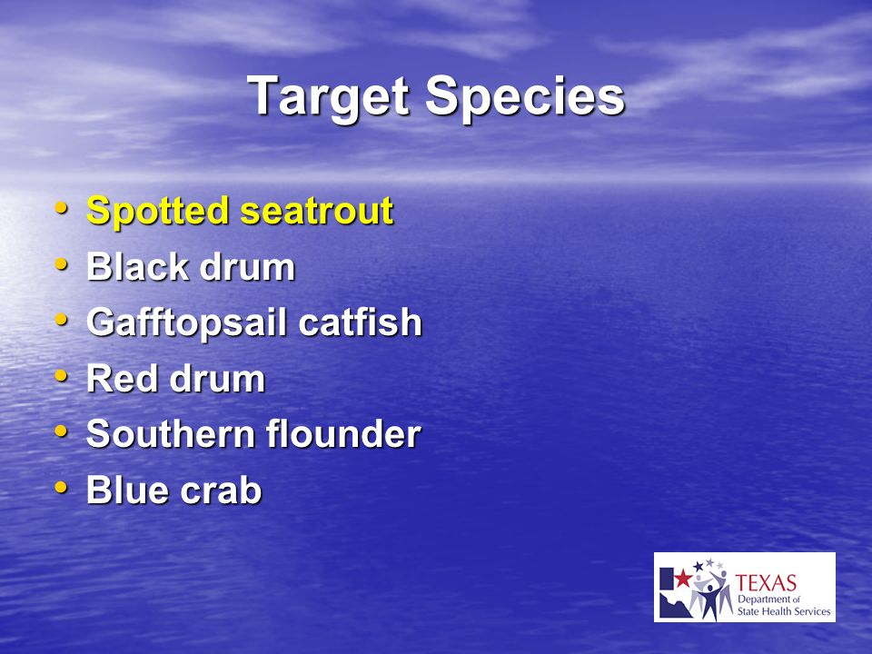 Target Species Spotted seatrout Spotted seatrout Black drum Black drum Gafftopsail catfish Gafftopsail catfish Red drum Red drum Southern flounder Sou