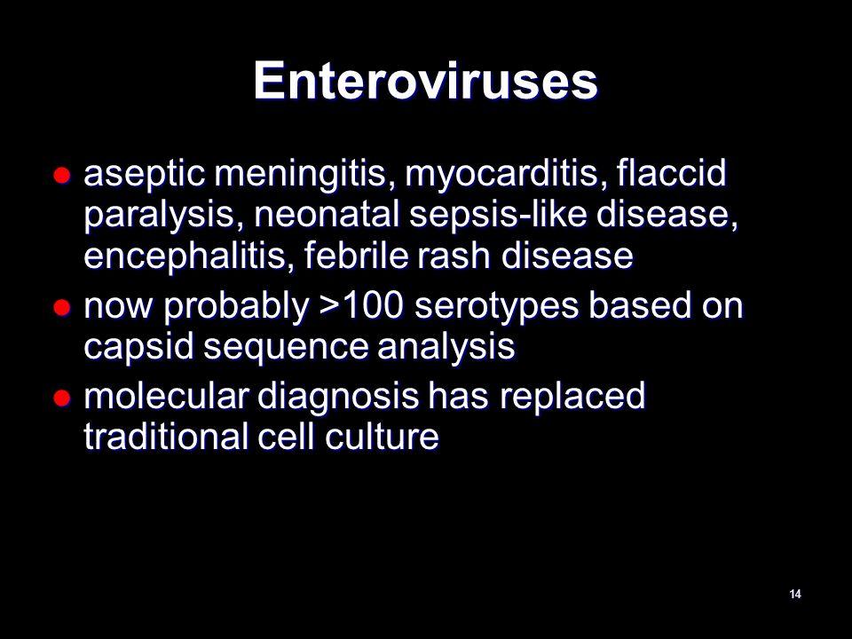 Enteroviruses aseptic meningitis, myocarditis, flaccid paralysis, neonatal sepsis-like disease, encephalitis, febrile rash disease aseptic meningitis,