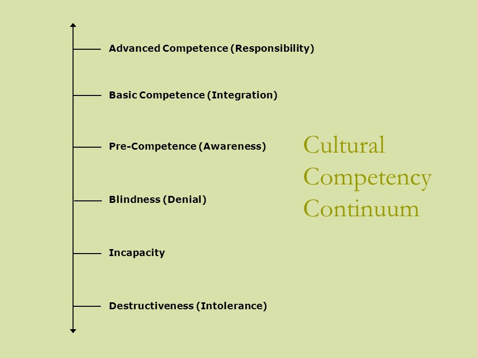 Cultural Competency Continuum Advanced Competence (Responsibility) Basic Competence (Integration) Pre-Competence (Awareness) Blindness (Denial) Incapa