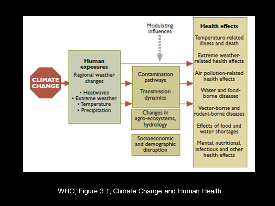 WHO, Figure 3.1, Climate Change and Human Health