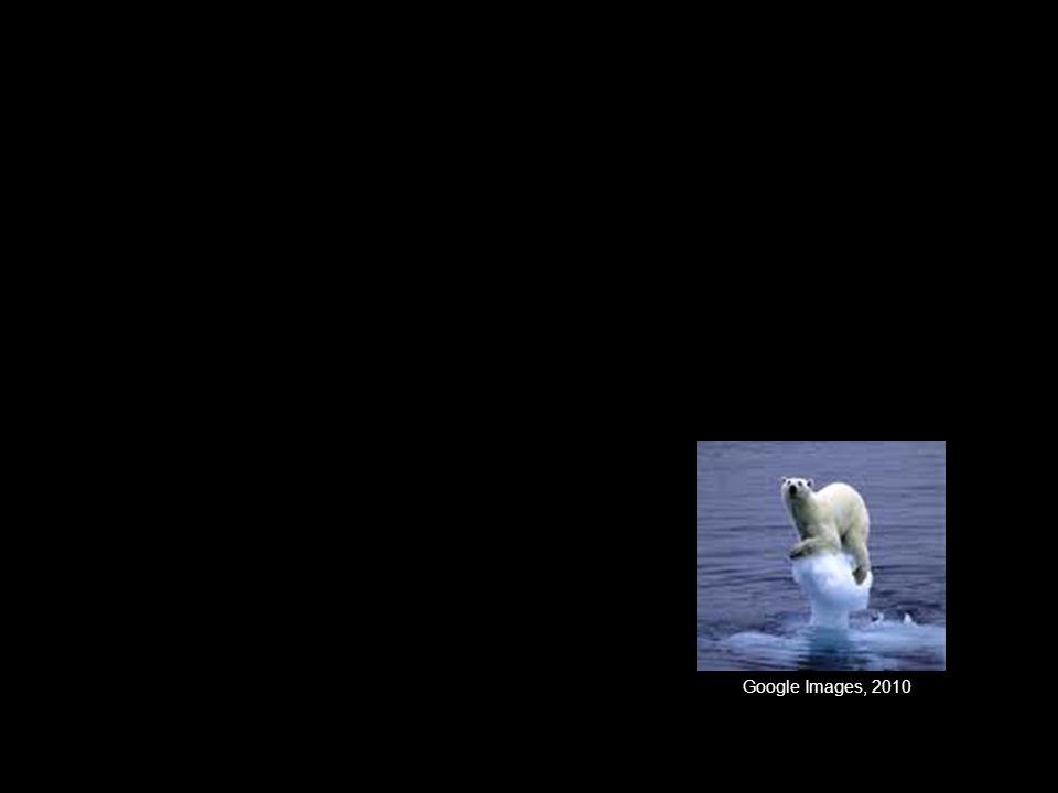 Google Images, 2010