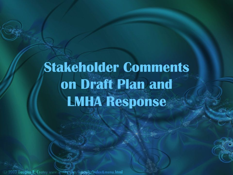Stakeholder Comments on Draft Plan and LMHA Response