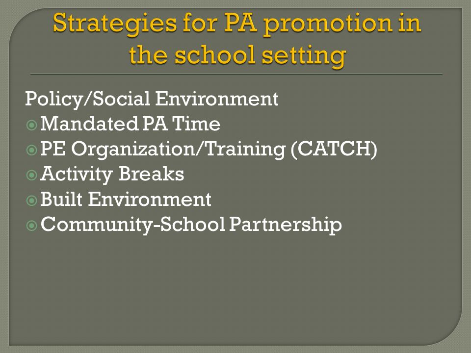 Policy/Social Environment Mandated PA Time PE Organization/Training (CATCH) Activity Breaks Built Environment Community-School Partnership