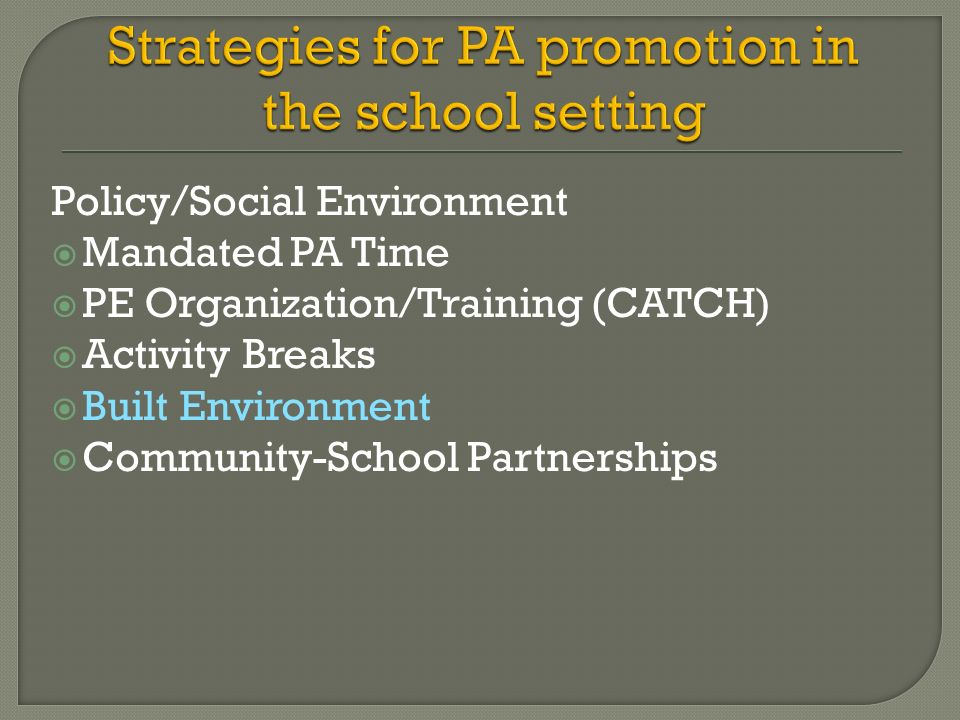 Policy/Social Environment Mandated PA Time PE Organization/Training (CATCH) Activity Breaks Built Environment Community-School Partnerships