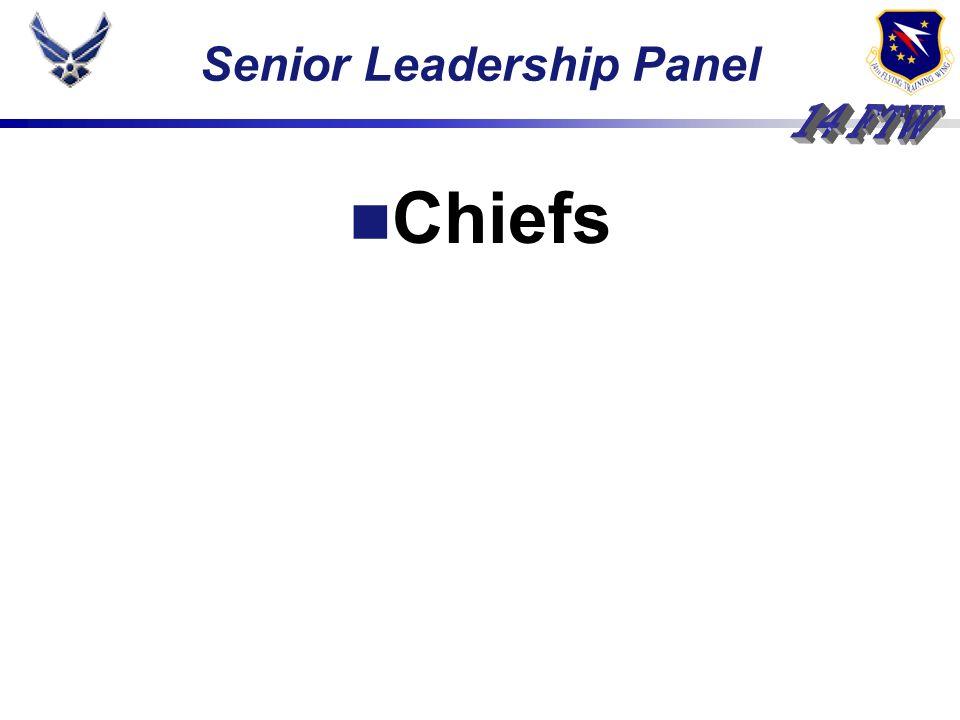 Senior Leadership Panel Chiefs