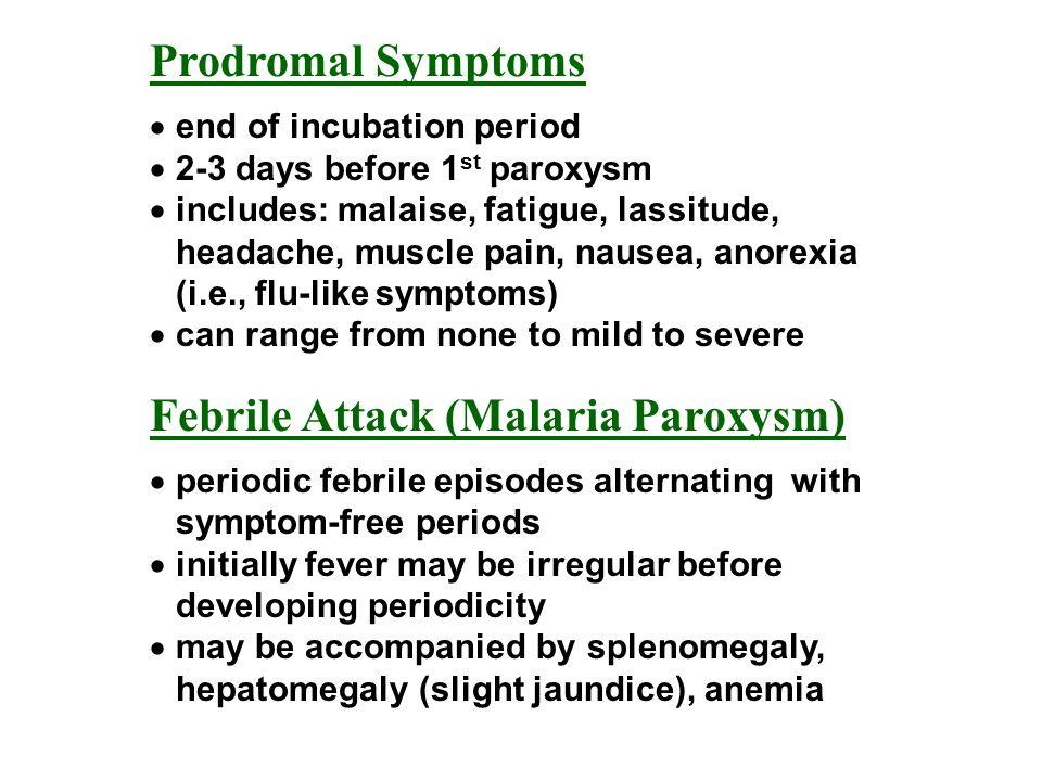 Prodromal Symptoms end of incubation period 2-3 days before 1 st paroxysm includes: malaise, fatigue, lassitude, headache, muscle pain, nausea, anorex
