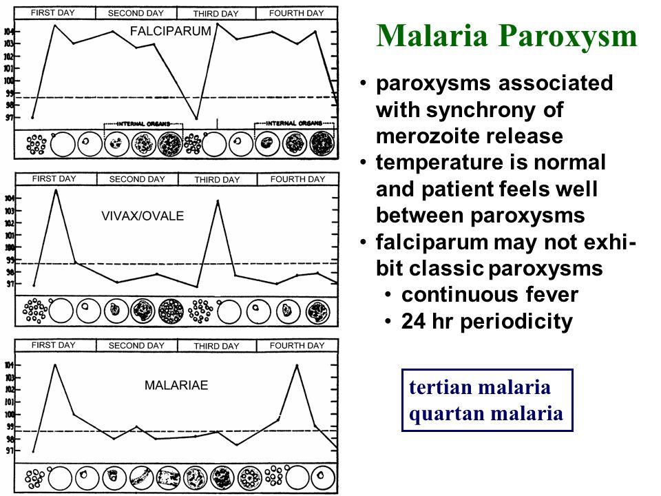 Karunaweera et al (1992) PNAS 89:3200 TNF = tumor necrosis factor- ( ) proinflammatory cytokine (produced in response to malarial antigens?) rigor sweating