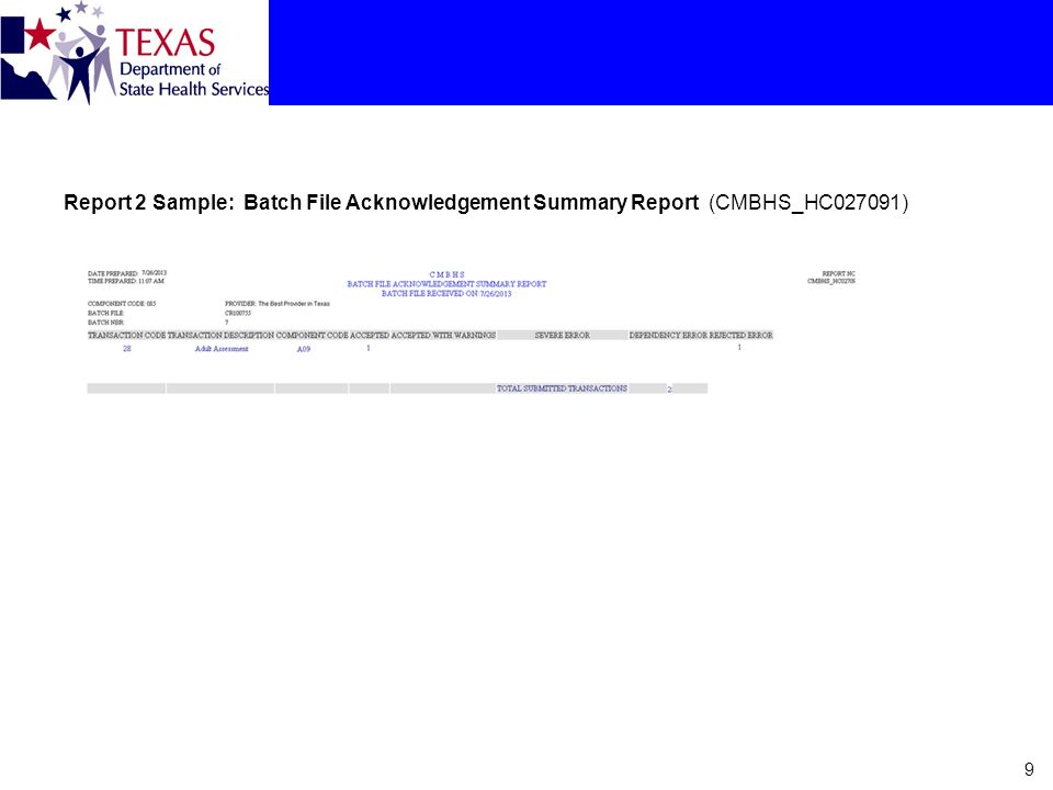 Report 2 Sample: Batch File Acknowledgement Summary Report (CMBHS_HC027091) 9