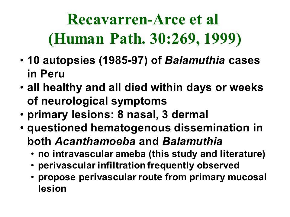 Recavarren-Arce et al (Human Path.