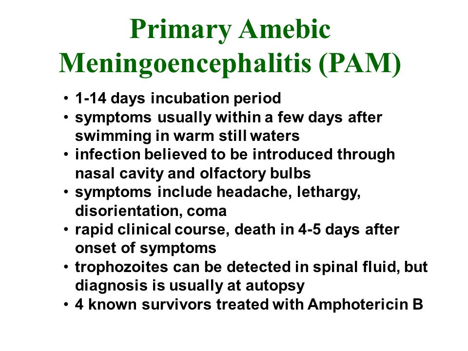 Primary Amebic Meningoencephalitis (PAM) 1-14 days incubation period symptoms usually within a few days after swimming in warm still waters infection believed to be introduced through nasal cavity and olfactory bulbs symptoms include headache, lethargy, disorientation, coma rapid clinical course, death in 4-5 days after onset of symptoms trophozoites can be detected in spinal fluid, but diagnosis is usually at autopsy 4 known survivors treated with Amphotericin B