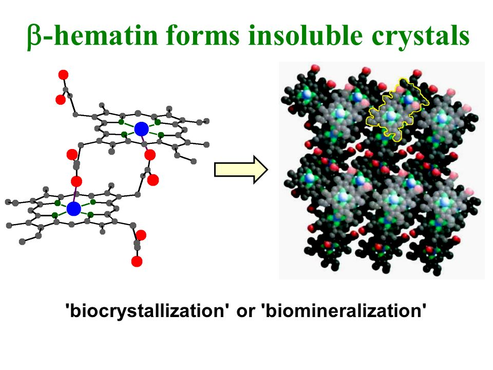-hematin forms insoluble crystals 'biocrystallization' or 'biomineralization'