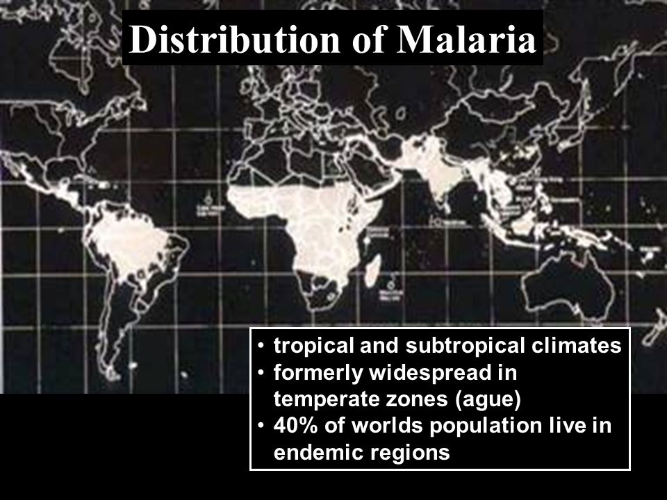 Distribution of Malaria tropical and subtropical climates formerly widespread in temperate zones (ague) 40% of worlds population live in endemic regio