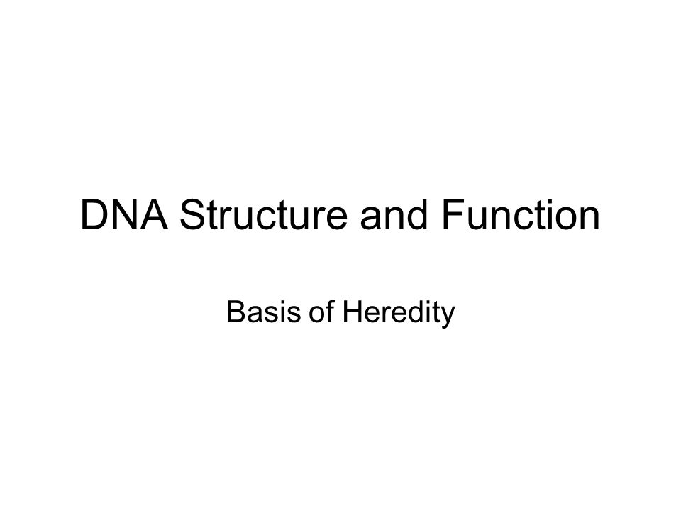 DNA Structure and Function Basis of Heredity