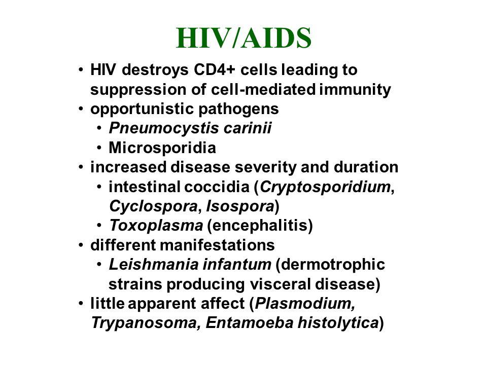 HIV/AIDS HIV destroys CD4+ cells leading to suppression of cell-mediated immunity opportunistic pathogens Pneumocystis carinii Microsporidia increased disease severity and duration intestinal coccidia (Cryptosporidium, Cyclospora, Isospora) Toxoplasma (encephalitis) different manifestations Leishmania infantum (dermotrophic strains producing visceral disease) little apparent affect (Plasmodium, Trypanosoma, Entamoeba histolytica)
