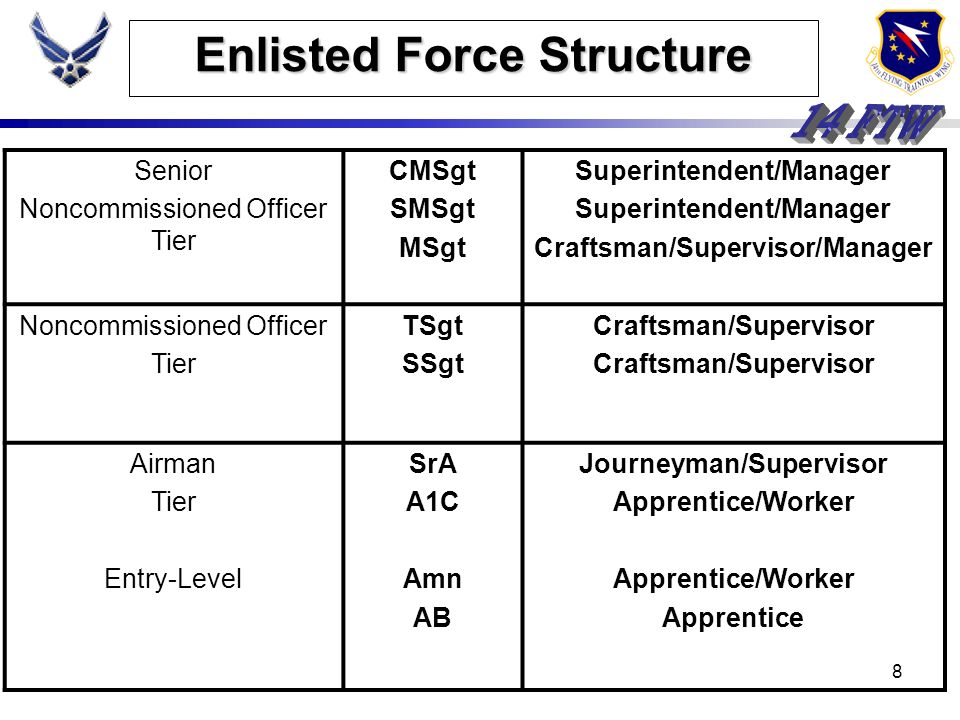 7 Enlisted Force Structure The Purpose: - Best meets mission requirements - Provide common, stable career structure - Provides all Airmen opportunity