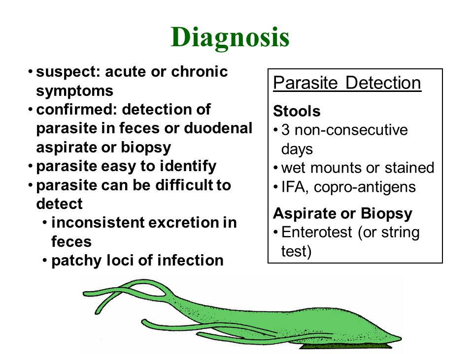 Diagnosis suspect: acute or chronic symptoms confirmed: detection of parasite in feces or duodenal aspirate or biopsy parasite easy to identify parasi