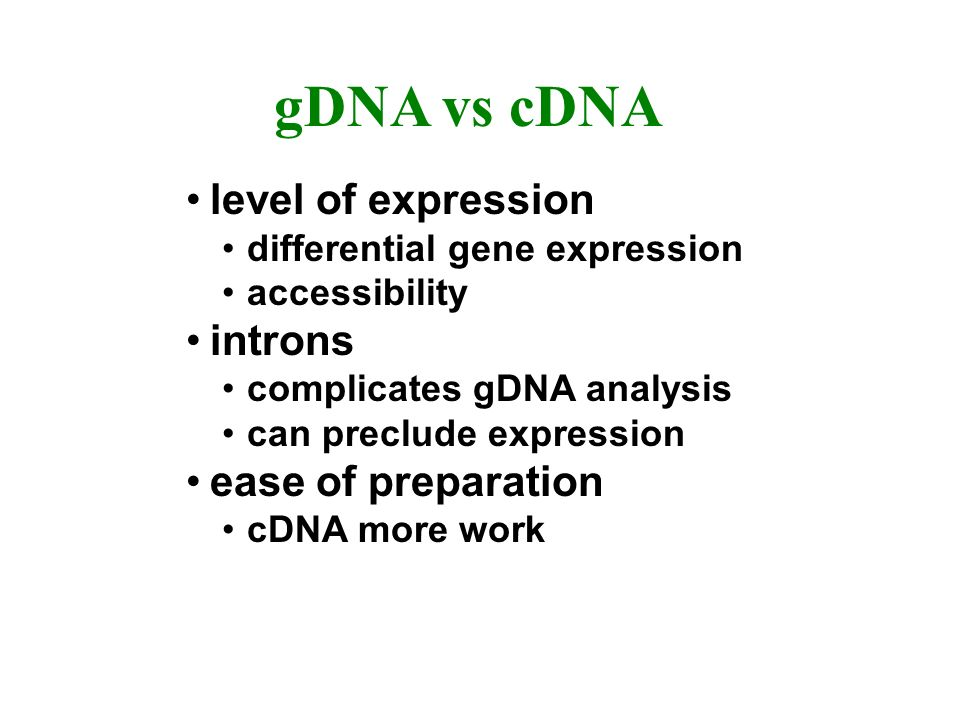 gDNA vs cDNA level of expression differential gene expression accessibility introns complicates gDNA analysis can preclude expression ease of preparation cDNA more work