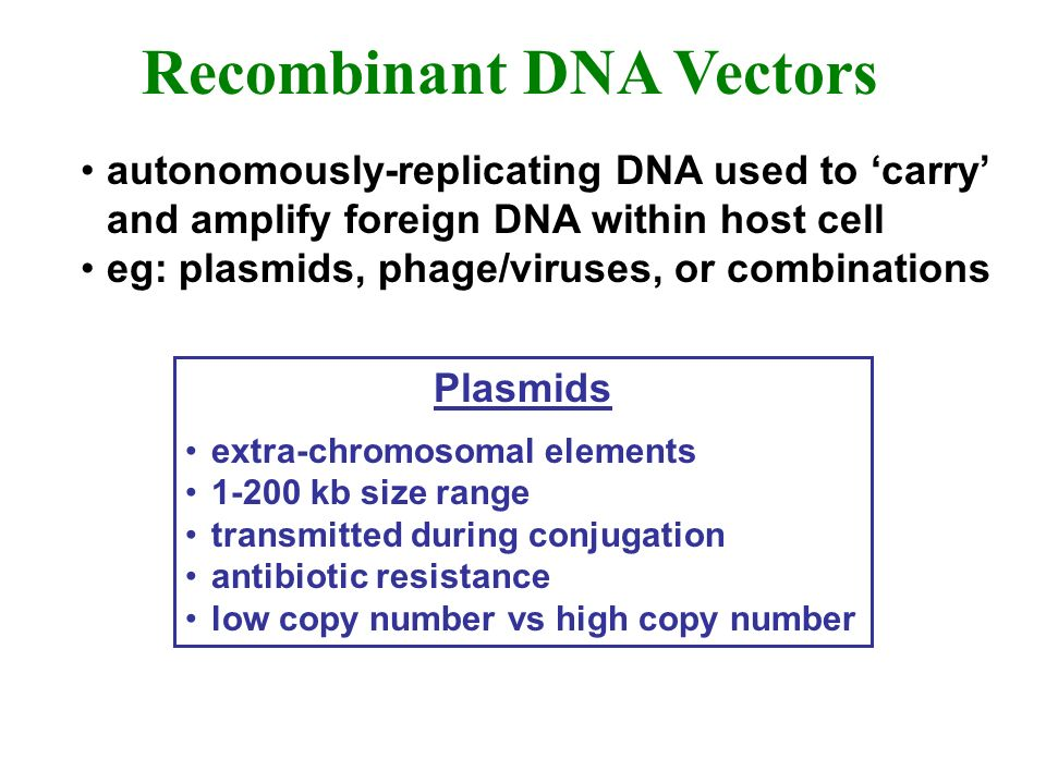 Recombinant DNA Vectors Plasmids extra-chromosomal elements 1-200 kb size range transmitted during conjugation antibiotic resistance low copy number vs high copy number autonomously-replicating DNA used to carry and amplify foreign DNA within host cell eg: plasmids, phage/viruses, or combinations