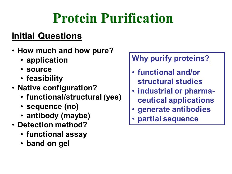 Protein Purification Initial Questions How much and how pure? application source feasibility Native configuration? functional/structural (yes) sequenc