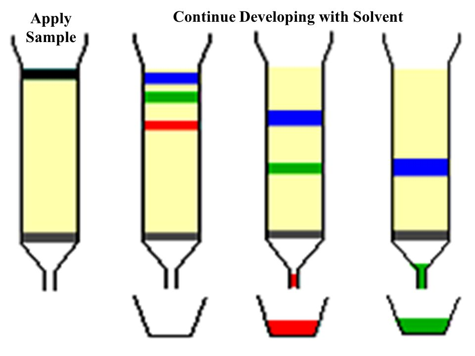Common Media Used in Liquid Protein Chromatography