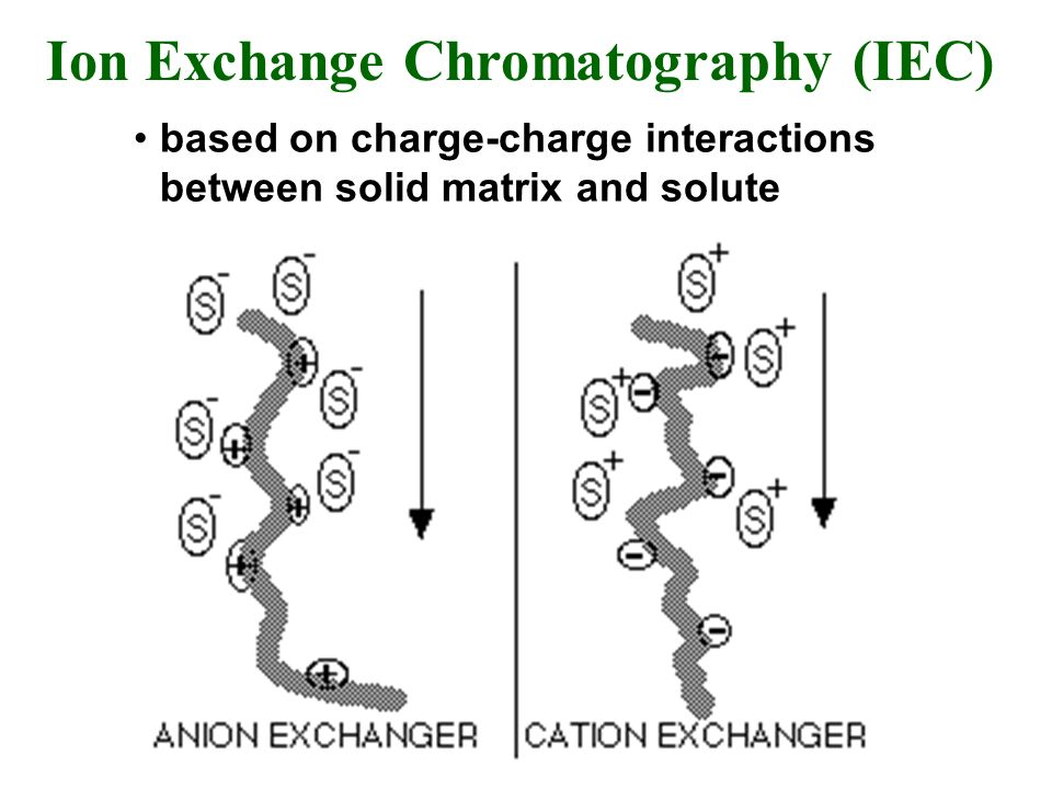 Ion Exchange Chromatography (IEC) based on charge-charge interactions between solid matrix and solute