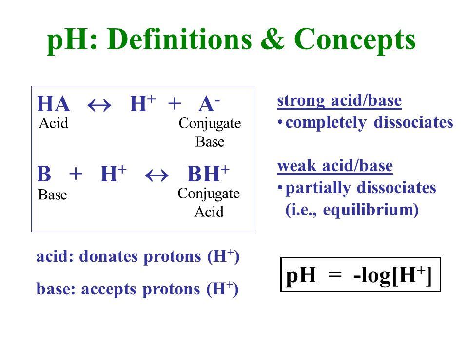 HA H + + A - B + H + BH + Acid Base Conjugate Base Conjugate Acid acid: donates protons (H + ) base: accepts protons (H + ) strong acid/base completely dissociates weak acid/base partially dissociates (i.e., equilibrium) pH = -log[H + ] pH: Definitions & Concepts