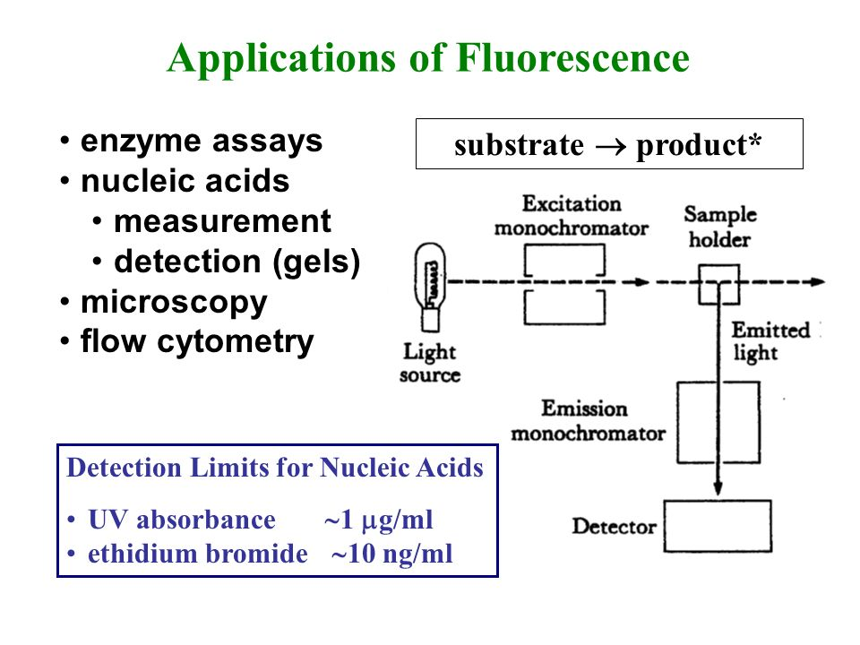 enzyme assays nucleic acids measurement detection (gels) microscopy flow cytometry Applications of Fluorescence substrate product* Detection Limits fo