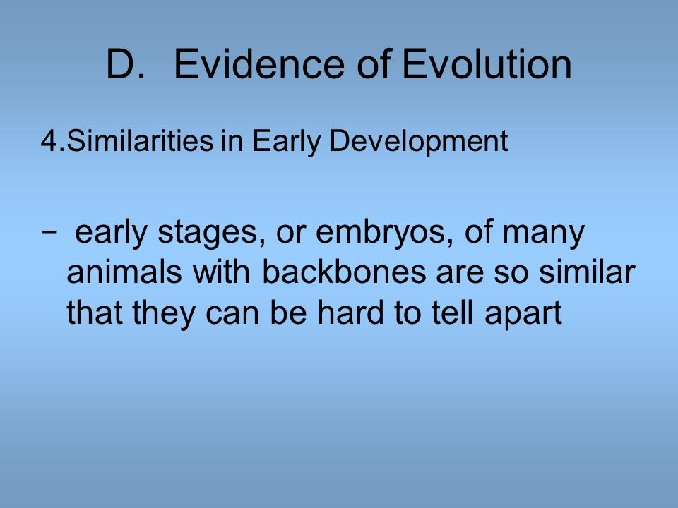 D.Evidence of Evolution 4.Similarities in Early Development early stages, or embryos, of many animals with backbones are so similar that they can be h