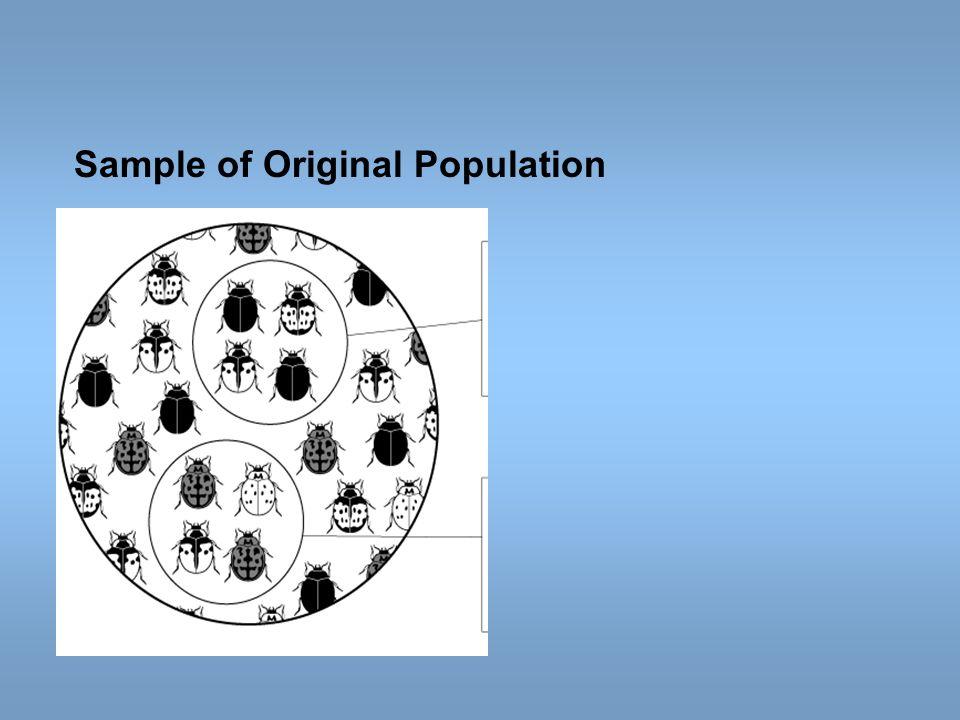 Sample of Original Population