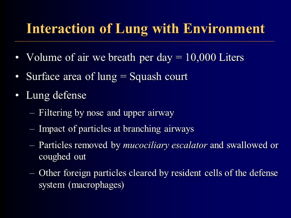 Interaction of Lung with Environment Volume of air we breath per day = 10,000 LitersVolume of air we breath per day = 10,000 Liters Surface area of lu
