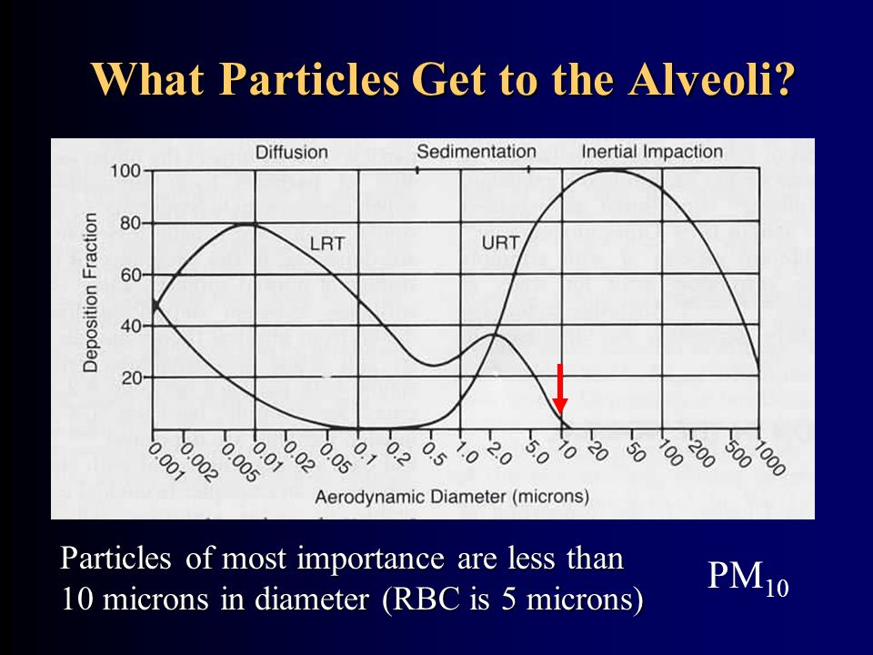 What Particles Get to the Alveoli? Particles of most importance are less than 10 microns in diameter (RBC is 5 microns) PM 10