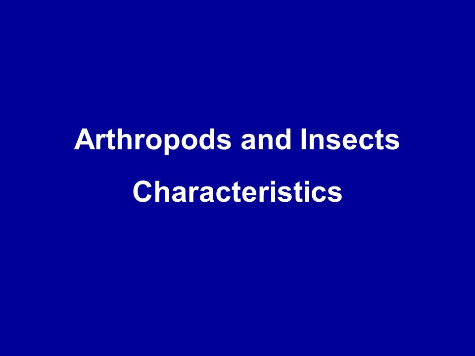 Arthropods and Insects Characteristics
