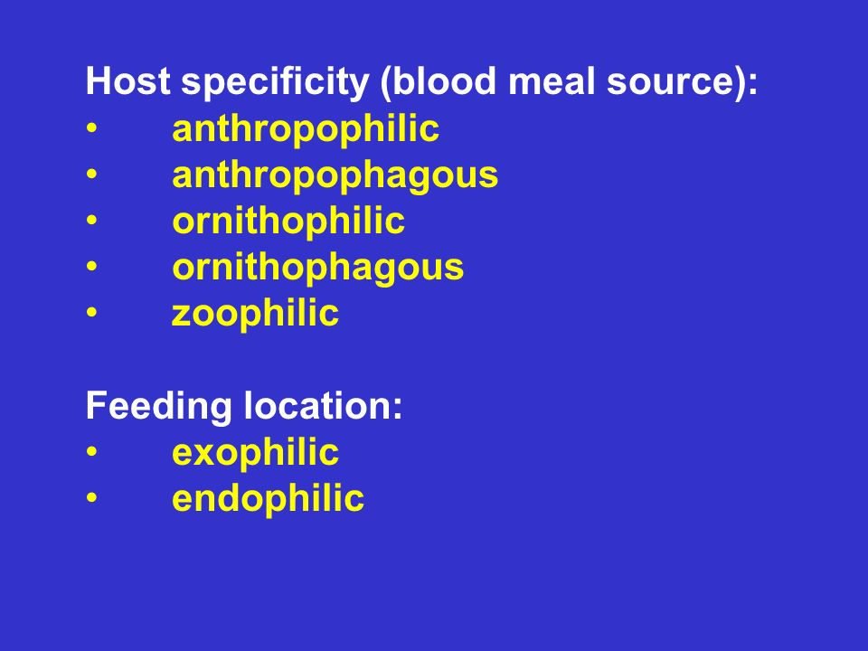 Host specificity (blood meal source): anthropophilic anthropophagous ornithophilic ornithophagous zoophilic Feeding location: exophilic endophilic