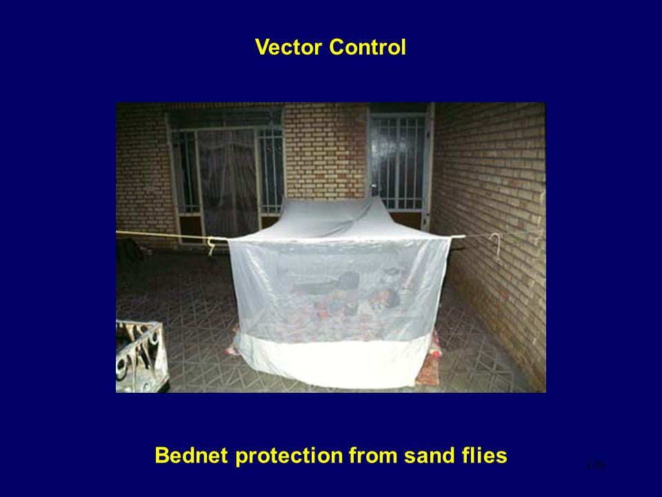 106 Bednet protection from sand flies Vector Control