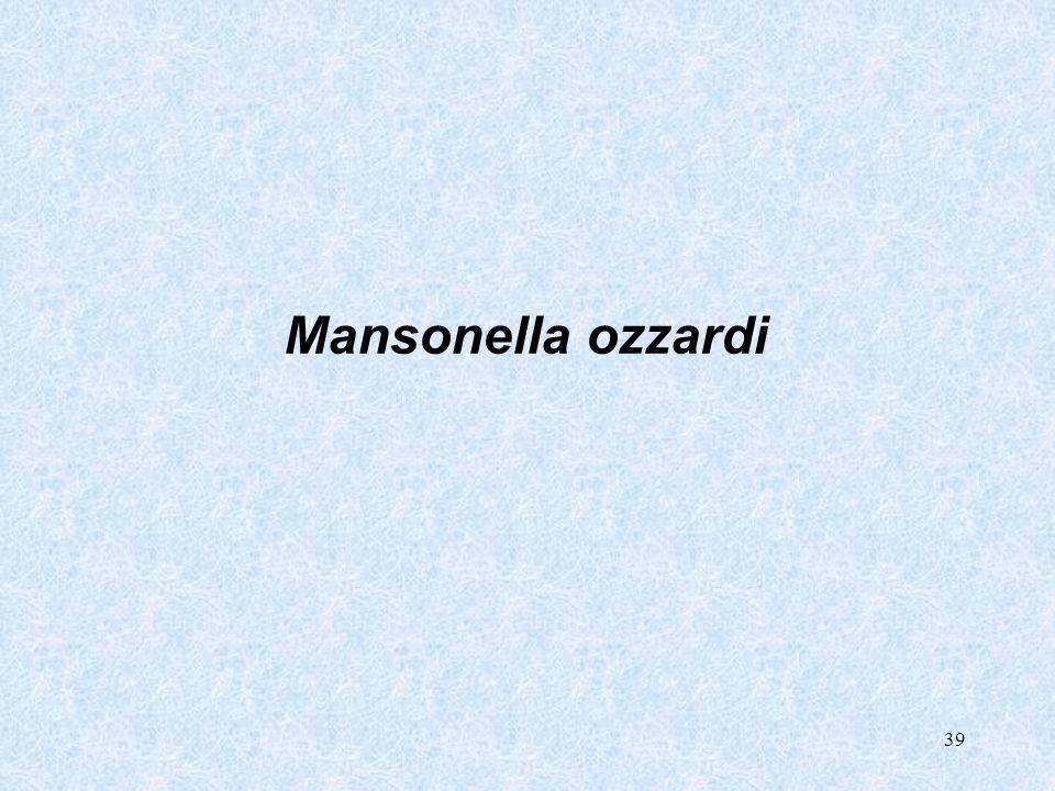 39 Mansonella ozzardi
