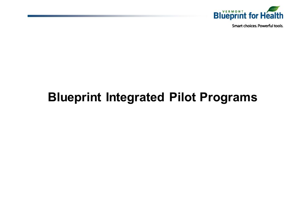 Blueprint Integrated Pilot Programs