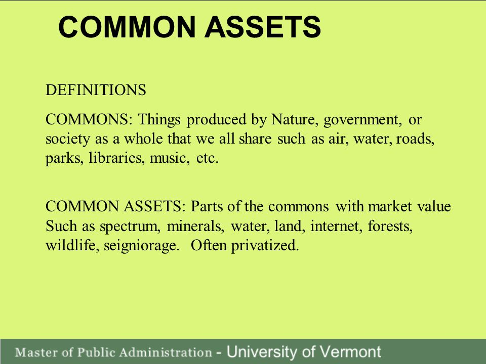 COMMON ASSETS DEFINITIONS COMMONS: Things produced by Nature, government, or society as a whole that we all share such as air, water, roads, parks, libraries, music, etc.
