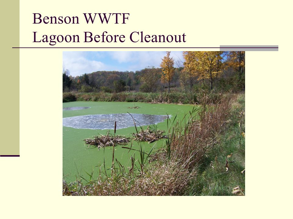 Benson WWTF Lagoon Before Cleanout