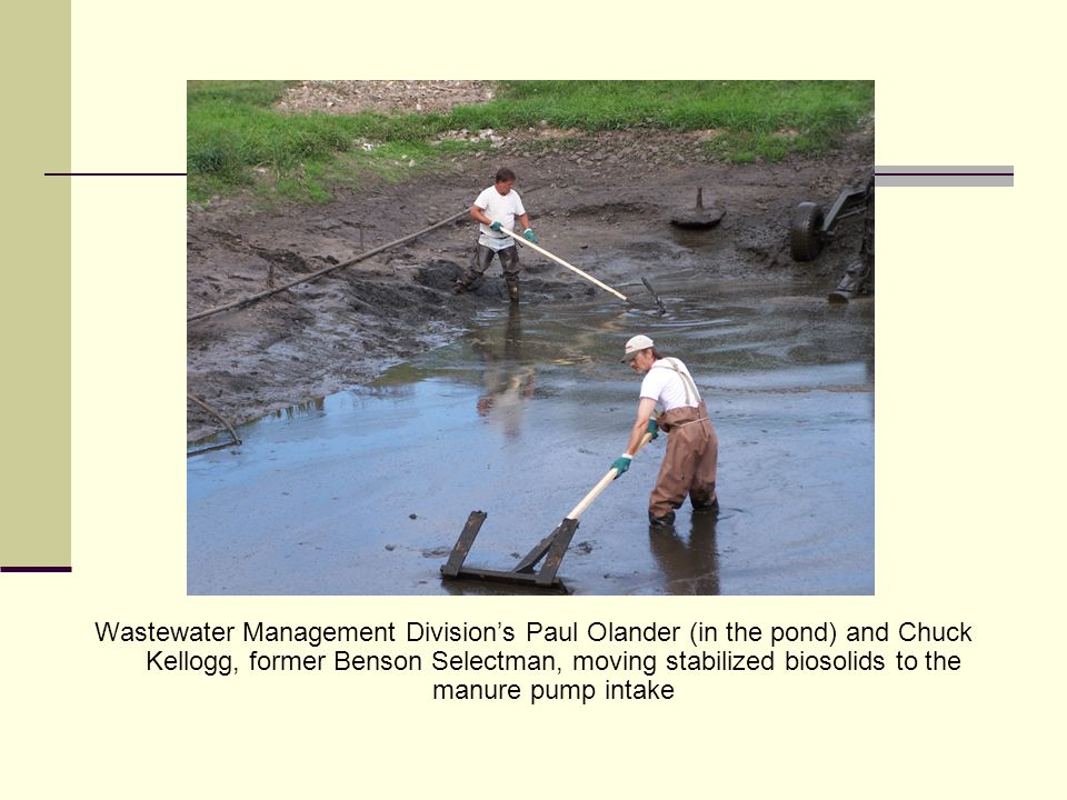 Wastewater Management Divisions Paul Olander (in the pond) and Chuck Kellogg, former Benson Selectman, moving stabilized biosolids to the manure pump intake
