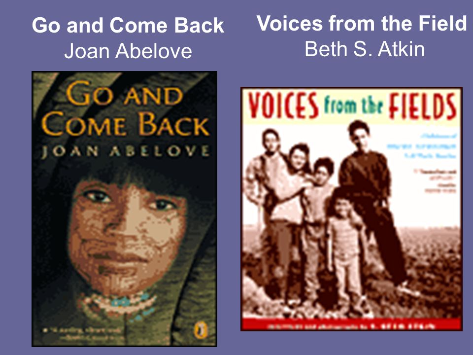 Go and Come Back Joan Abelove Voices from the Field Beth S. Atkin
