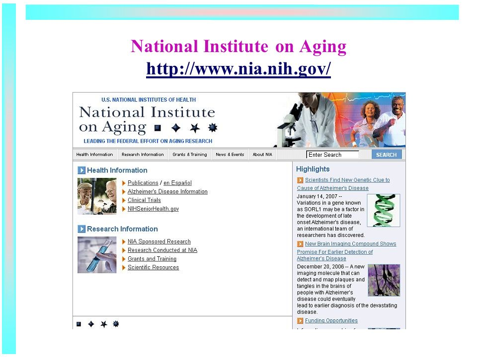 National Institute on Aging http://www.nia.nih.gov/ http://www.nia.nih.gov/