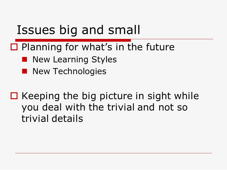 Issues big and small Planning for whats in the future New Learning Styles New Technologies Keeping the big picture in sight while you deal with the trivial and not so trivial details