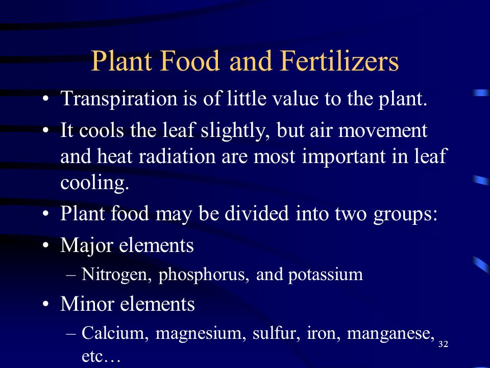 32 Plant Food and Fertilizers Transpiration is of little value to the plant. It cools the leaf slightly, but air movement and heat radiation are most